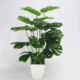 Perfect For Any Room! Has A Realistic Branches And Leaves Which Let You Feel The Presence Of Nature!